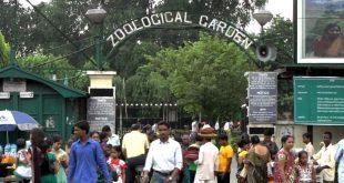 কলকাতা চিড়িয়াখানা এখন ডিজিটালের পথে, অ্যাপেই মিলবে সমস্ত তথ্য