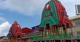 রথ যাত্রার প্রাক্কালে পুরীর জগন্নাথ মন্দিরে জোরকদমে চলছে রথযাত্রার প্রস্তুতি